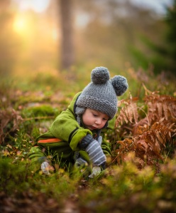 baby-forest